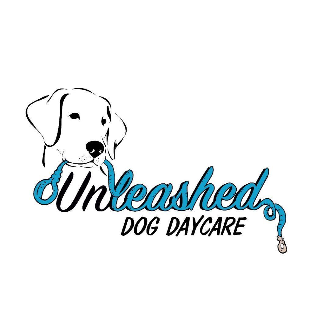 unleashed_dogdaycare